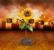 Angela Waye Prints - Sunflower in Red City Print by Angela Waye