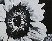 Sunflower Oil Paintings - Sunflower by Katharina Filus