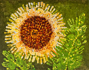Finger Mixed Media Prints - Sunflower Print by Kindergarten