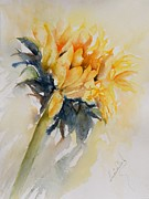 Watercolour Paintings - SunFlower by Lucia Del