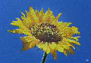 One Planet Infinite Places Framed Prints - Sunflower Mosaic Framed Print by Steve Huang