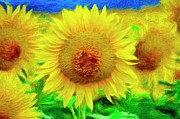 Field Digital Art - Sunflower Posing by Jeff Kolker