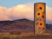 Country Prints Posters - Sunflower Silo in North Boulder County Colorado Color Print Poster by James Bo Insogna