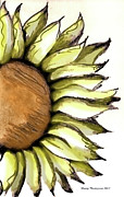 Manipulation Drawings Framed Prints - Sunflower Sketch Framed Print by Sherry Thompson