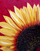 Maria Soto Robbins Art - Sunflower Sunshine  by Maria Soto Robbins