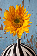 Vase Art - Sunflower vase by Garry Gay