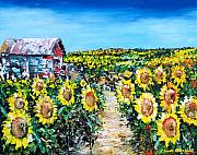 Flowers Sunflowers Barn Prints - Sunflowers Print by Claude Marshall