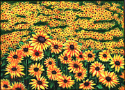 Gail Finn - Sunflowers