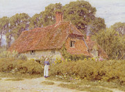 Woman Standing Posters - Sunflowers Poster by Helen Allingham