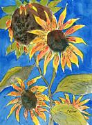 Sunflowers Print by Marsha Elliott