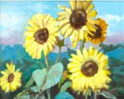 Michael McDougall - Sunflowers