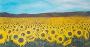 Gunter  Tanzerel - Sunflowers Near Arles