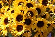 Sunflowers Print by Paulette Thomas