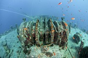 Wreck Prints - Sunken Ship Wreck Print by Photostock-israel
