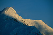 Snow Scenes Art - Sunlight And Shadows On  Mount Mckinley by Bill Hatcher