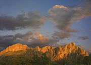 Chihuahua Framed Prints - Sunlight Illuminating Chisos Mountains Framed Print by Tim Fitzharris