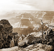 Colorado Framed Prints Posters - Sunlight in the Grand Canyon Poster by M K  Miller