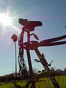 Bicycle Sculpture Posters - Sunlight in Your Hair Poster by Steve Mudge