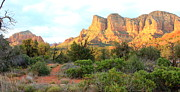 Red Rocks Of Sedona Prints - Sunlight on Sedona Rocks Print by Carol Groenen