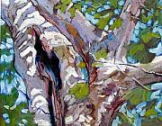 Tree. Sycamore Paintings - Sunlight on Sycamore by John Lautermilch