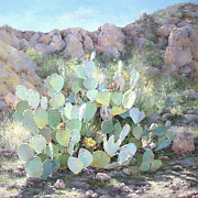 Blooming Paintings - Sunlit Canyon by Judith Moore-Knapp