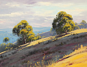 Afternoon Light Framed Prints - Sunlit Hills Hartley Framed Print by Graham Gercken