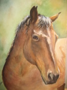 Chestnut Horse Paintings - Sunlit Horse by Patricia Pushaw