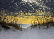 Destin Framed Prints - Sunlit Passage Framed Print by Janet Fikar