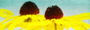 Panorama Mixed Media - Sunny 70s by Angela Doelling AD DESIGN Photo and PhotoArt