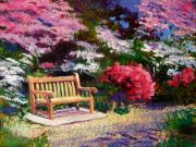 Gardenscapes Painting Framed Prints - Sunny Bench Plein Aire Framed Print by David Lloyd Glover