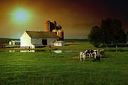 Joel Witmeyer - Sunny Days on the Farm