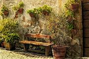 Cobblestone Prints - Sunny Italian Afternoon Print by Lynn Andrews
