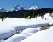 Sawtooth Mountains Metal Prints - Sunny January Day Sawtooth Mountains Metal Print by Ed  Riche