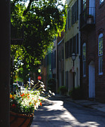 Charleston Houses Posters - Sunny Lane in Charleston South Carolina Poster by Susanne Van Hulst