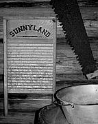 Washboard Framed Prints - Sunnyland black and white Framed Print by Dana  Oliver