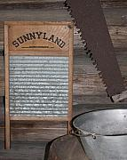 Washboard Framed Prints - Sunnyland Framed Print by Dana  Oliver