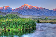 Owens River Metal Prints - Sunrise Alpenglow On Mt Tom And Owens River, California, Usa, October 2010 Metal Print by Bill Wight