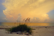 Sunrise And Sea Oats Print by John Myers