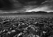 Devil Posters - Sunrise At Devils Golf Course, Death Valley, Deat Poster by David Kiene