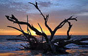 Beach Photo Posters - Sunrise at Driftwood Beach 5.2 Poster by Bruce Gourley