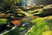 Adam Jewell - Sunrise At Elakala Falls