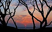 Seashore Digital Art Originals - Sunrise at Fort Fisher by Paul Boroznoff