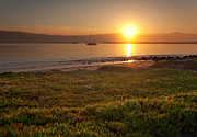 Half Moon Bay Metal Prints - Sunrise at Half Moon Bay Metal Print by Matt Tilghman