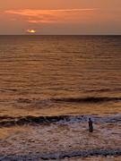 Sunrise At Jacksonville Print by Joe Bonita