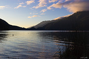 Fresh Green Prints - Sunrise At Lake Crescent Print by Heidi Smith