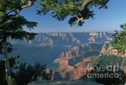 North Rim Photos - Sunrise at the North Rim by Sandra Bronstein