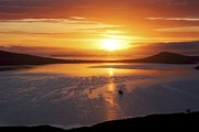 Austral Islands Prints - Sunrise, Falkland Islands Print by Charlotte Main