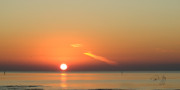 Sun Rise Prints - Sunrise Gulfport Mississippi Print by Paul Gaj