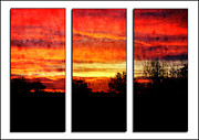 Silhouette Digital Art - Sunrise in Eastern Colorado - Triptych by Ellen Lacey