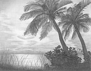 Beach Scenery Drawings Prints - Sunrise In South Florida Print by Pete Giffen